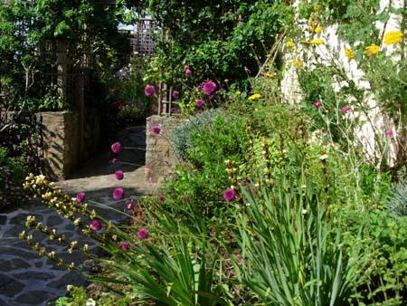 North london garden design contemporary garden design in for Garden design devon